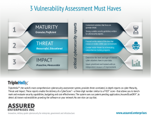 3 Vulnerability Assessment Must Haves Infographic
