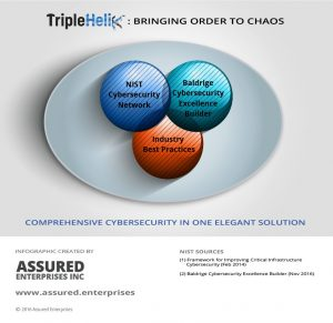 TripleHelix Is the Solution that Brings Order to Chaos Infographic