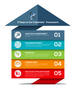 Infographic - 5 steps of the TripleHelix Framework